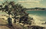 "<span class=""caption-caption"">Looking towards the hinterland, Gold Coast</span>, 1969. <br />Slide, collection of <span class=""caption-contributor"">Robin Barron</span>."