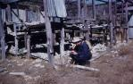 """<span class=""""caption-caption"""">Roma district, site of Roma Blocks Oil Company's petroleum-exploration well 1938, abandoned core-storage shed</span>, 1959. <br />Slide, collection of <span class=""""caption-contributor"""">Patrick Conaghan</span>."""