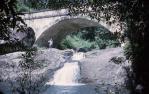 "<span class=""caption-caption"">Bridge over Crystal Creek, Paluma, Thuringowa</span>, 1964. <br />Slide, collection of <span class=""caption-contributor"">Richard Hopkins</span>."