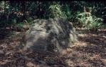"""<span class=""""caption-caption"""">Banfield's grave, Dunk Island, Whitsunday, Great Barrier Reef</span>, 1976. <br />Slide, collection of <span class=""""caption-contributor"""">Richard Hopkins</span>."""