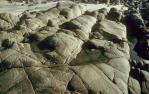 "<span class=""caption-caption"">Rocks, Noosa</span>, 1992. <br />Slide, collection of <span class=""caption-contributor"">Ruth Read</span>."
