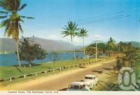 """<span class=""""caption-caption"""">Coconut Palms, The Esplanade, Cairns</span>, c1962. <br />Postcard folder by <span class=""""caption-publisher"""">Murray Views Pty Ltd</span>, collection of <span class=""""caption-contributor"""">Centre for the Government of Queensland</span>."""