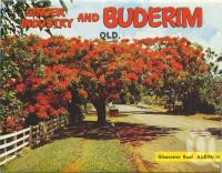 "<span class=""caption-caption"">Gloucester Road, Buderim</span>, c1970. <br />Postcard folder by <span class=""caption-publisher"">Bernard Kuskopf</span>, collection of <span class=""caption-contributor"">Centre for the Government of Queensland</span>."