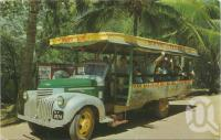 "<span class=""caption-caption"">Tourist bus, Magnetic Island</span>, c1970. <br />Postcard by <span class=""caption-publisher"">Murray Views Pty Ltd</span>, collection of <span class=""caption-contributor"">Centre for the Government of Queensland</span>."