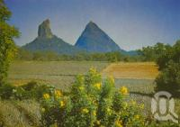 "<span class=""caption-caption"">Mt Coonowrin (Crook-neck) at left and Mt Beerwah (up in the sky)</span>, c1975. <br />Postcard by <span class=""caption-publisher"">Bernard Kuskopf</span>, collection of <span class=""caption-contributor"">Centre for the Government of Queensland</span>."