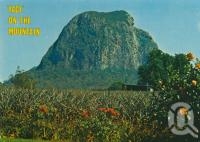 "<span class=""caption-caption"">Mt Tibrogargan, 'The face on the mountain', Glass House Mountains</span>, c1975. <br />Postcard by <span class=""caption-publisher"">Bernard Kuskopf</span>, collection of <span class=""caption-contributor"">Centre for the Government of Queensland</span>."