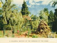 "<span class=""caption-caption"">The gardens, the Oasis</span>, c1960. <br />Postcard folder by <span class=""caption-publisher"">Sydney G Hughes Pty Ltd</span>, collection of <span class=""caption-contributor"">John Young</span>."