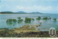 "<span class=""caption-caption"">Lammermoor Beach, looking north to Wreck Point, scenic drive, Emu Park, Yeppoon</span>, 1965. <br />Postcard folder by <span class=""caption-publisher"">Murray Views Pty Ltd</span>, collection of <span class=""caption-contributor"">Centre for the Government of Queensland</span>."