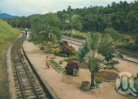 "<span class=""caption-caption"">Kuranda Railway Station</span>, c1962. <br />Postcard folder by <span class=""caption-publisher"">Unknown Publisher</span>, collection of <span class=""caption-contributor"">Centre for the Government of Queensland</span>."