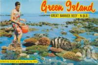 """<span class=""""caption-caption"""">Collecting coral and shells on the reef</span>, c1960. <br />Postcard folder by <span class=""""caption-publisher"""">Murray Views Pty Ltd</span>, collection of <span class=""""caption-contributor"""">Centre for the Government of Queensland</span>."""