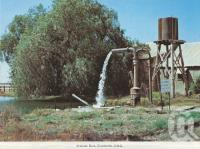 "<span class=""caption-caption"">Artesian Bore, Charleville</span>, c1980. <br />Postcard folder by <span class=""caption-publisher"">Murray Views Pty Ltd</span>, collection of <span class=""caption-contributor"">Centre for the Government of Queensland</span>."
