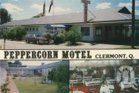 "<span class=""caption-caption"">Peppercorn Motel, Clermont</span>, c1980. <br />Postcard by <span class=""caption-publisher"">Sunland</span>, collection of <span class=""caption-contributor"">Centre for the Government of Queensland MS</span>."