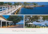 "<span class=""caption-caption"">Wellington Point</span>, 2002. <br />Postcard by <span class=""caption-publisher"">Murray Views Pty Ltd</span>, collection of <span class=""caption-contributor"">Centre for the Government of Queensland</span>."