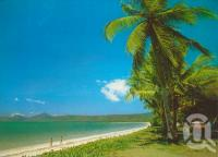 "<span class=""caption-caption"">Newell Beach, Mossman</span>, 1989. <br />Postcard by <span class=""caption-publisher"">Peer Productions</span>, collection of <span class=""caption-contributor"">Centre for the Government of Queensland</span>."