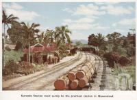 "<span class=""caption-caption"">Kuranda Station must surely be the prettiest station in Queensland.</span>. <br />From <span class=""caption-book"">Mulgrave Shire</span>, <span class=""caption-publisher"">Mulgrave Shire Council</span>, 1954, collection of <span class=""caption-contributor"">Fryer Library, UQ</span>."