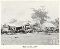 "<span class=""caption-caption"">Cheese factory, Lowood</span>. <br />From <span class=""caption-book"">A Queenly Colony</span>, <span class=""caption-publisher"">Government Printer</span>, 1901, collection of <span class=""caption-contributor"">Fryer Library, UQ</span>."