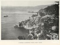"""<span class=""""caption-caption"""">A monthly lighthouse visitor, Percy Island</span>. <br />From <span class=""""caption-book"""">North Queensland, Australia</span>, <span class=""""caption-publisher"""">Queensland Government Intelligence and Tourist Bureau</span>, 1908, collection of <span class=""""caption-contributor"""">Fryer Library, UQ</span>."""