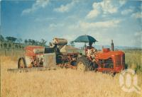 """<span class=""""caption-caption"""">Barley harvesting on the Darling Downs</span>, 1950. <br />Booklet, collection of <span class=""""caption-contributor"""">John Young</span>."""