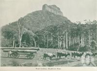 "<span class=""caption-caption"">Mount Lindesay, Macpherson Ranges</span>, c1925. <br />Booklet, collection of <span class=""caption-contributor"">John Young</span>."