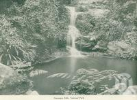 "<span class=""caption-caption"">Canungra Falls, National Park</span>, c1925. <br />Booklet, collection of <span class=""caption-contributor"">John Young</span>."