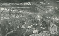 """<span class=""""caption-caption"""">Tinnenburra Woolshed, Cunnamulla District - 40 shearers averaging 3800 sheep daily</span>. <br />From <span class=""""caption-book"""">Queensland Sheep and Wool Industry</span>, <span class=""""caption-creator"""">Queensland Government Intelligence and Tourist Bureau</span>, Brisbane, 1918, collection of <span class=""""caption-contributor"""">Centre for the Government of Queensland</span>."""