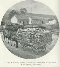 "<span class=""caption-caption"">Two loads of green sheepskins arriving at Belmont Wool-scour, Brisbane</span>. <br />From <span class=""caption-book"">Queensland Sheep and Wool Industry</span>, <span class=""caption-creator"">Queensland Government Intelligence and Tourist Bureau</span>, Brisbane, 1918, collection of <span class=""caption-contributor"">Centre for the Government of Queensland</span>."