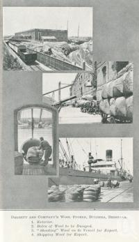 "<span class=""caption-caption"">Dalgety and Company's Wool Stores, Bulimba, Brisbane</span>. <br />From <span class=""caption-book"">Queensland Sheep and Wool Industry</span>, <span class=""caption-creator"">Queensland Government Intelligence and Tourist Bureau</span>, Brisbane, 1918, collection of <span class=""caption-contributor"">Centre for the Government of Queensland</span>."