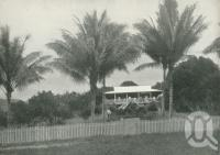 "<span class=""caption-caption"">Typical cane farmer's home, Mossman River</span>. <br />From <span class=""caption-book"">Tours in the Cairns District, Handbook to Cairns and Hinterland</span>, <span class=""caption-creator"">Queensland Railways</span>, Brisbane, 1912, collection of <span class=""caption-contributor"">Centre for the Government of Queensland</span>."