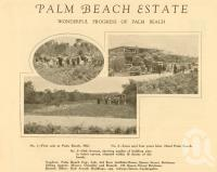 "<span class=""caption-caption"">Palm Beach Estate</span>. <br />From <span class=""caption-book"">The Simbel Souvenir of the Glorious South Coast</span>, <span class=""caption-publisher"">The Read Press</span>, Brisbane, c1926, collection of <span class=""caption-contributor"">Centre for the Government of Queensland</span>."