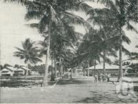 "<span class=""caption-caption"">Great Palm Island, administrative quarters</span>. <br />From <span class=""caption-book"">Queensland Journey</span>, <span class=""caption-creator"">C.B. Christensen</span>, <span class=""caption-publisher"">Queensland Government Tourist Bureau</span>, Brisbane, c1936, collection of <span class=""caption-contributor"">Centre for the Government of Queensland</span>."