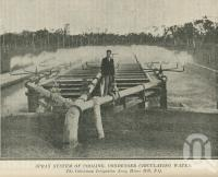 "<span class=""caption-caption"">The Inkerman Irrigation Area, Home Hill</span>. <br />From <span class=""caption-book"">The Queen State</span>, <span class=""caption-creator"">D.C. Tilghman</span>, <span class=""caption-publisher"">John Mills</span>, Brisbane, 1933, collection of <span class=""caption-contributor"">Centre for the Government of Queensland</span>."
