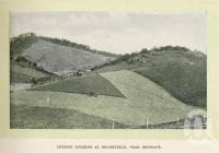"""<span class=""""caption-caption"""">Cutting Lucerne at Brookfield</span>. <br />From <span class=""""caption-book"""">Glimpses of Sunny Queensland (2nd edition)</span>, <span class=""""caption-creator"""">Queensland Government Intelligence and Tourist Bureau</span>, Brisbane, 1912, collection of <span class=""""caption-contributor"""">Centre for the Government of Queensland</span>."""