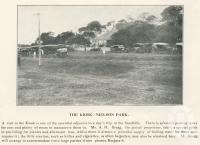 "<span class=""caption-caption"">The kiosk, Nielson Park</span>. <br />From <span class=""caption-book"">The Burnett and Isis Pictorial</span>, <span class=""caption-creator"">Richards & Kingdon</span>, Bundaberg, 1927, collection of <span class=""caption-contributor"">Centre for the Government of Queensland</span>."