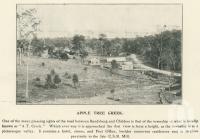 "<span class=""caption-caption"">Apple Tree Creek</span>. <br />From <span class=""caption-book"">The Burnett and Isis Pictorial</span>, <span class=""caption-creator"">Richards & Kingdon</span>, Bundaberg, 1927, collection of <span class=""caption-contributor"">Centre for the Government of Queensland</span>."