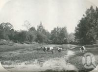 """<span class=""""caption-caption"""">Lockyer Creek, near Laidley</span>. <br />From <span class=""""caption-book"""">Australia Unlimited</span>, <span class=""""caption-creator"""">Edwin J Brady</span>, <span class=""""caption-publisher"""">George Robertson & Co</span>, Melbourne, 1918, collection of <span class=""""caption-contributor"""">Centre for the Government of Queensland</span>."""