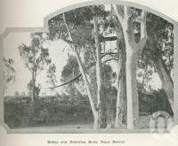 """<span class=""""caption-caption"""">Bridge over Dumaresq River, Texas district</span>. <br />From <span class=""""caption-book"""">Australia Unlimited</span>, <span class=""""caption-creator"""">Edwin J Brady</span>, <span class=""""caption-publisher"""">George Robertson & Co</span>, Melbourne, 1918, collection of <span class=""""caption-contributor"""">Centre for the Government of Queensland</span>."""