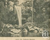 "<span class=""caption-caption"">Curtis Falls Tamborine Mountain</span>. <br />From <span class=""caption-book"">Penrod's 150 miles round Brisbane</span>, <span class=""caption-creator"">Penrod Guide Book Company</span>, Brisbane, 1956, collection of <span class=""caption-contributor"">Centre for the Government of Queensland</span>."
