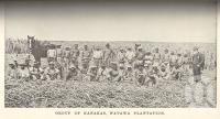"<span class=""caption-caption"">Group of 'Kanakas', Watawa Plantation</span>. <br />From <span class=""caption-book"">Queensland Agricultural Journal</span>, 1897, collection of <span class=""caption-contributor"">Fryer Library, UQ</span>."