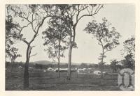 """<span class=""""caption-caption"""">Biggenden township</span>. <br />From <span class=""""caption-book"""">Queensland Agricultural Journal</span>, 1900, collection of <span class=""""caption-contributor"""">Fryer Library, UQ</span>."""