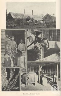 "<span class=""caption-caption"">Rice mill, Pimpama Island</span>. <br />From <span class=""caption-book"">Queensland Agricultural Journal</span>, 1901, collection of <span class=""caption-contributor"">Fryer Library, UQ</span>."