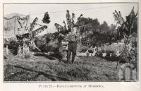 """<span class=""""caption-caption"""">Banana-growing at Moorooka</span>. <br />From <span class=""""caption-book"""">Queensland Agricultural Journal</span>, 1919, collection of <span class=""""caption-contributor"""">Fryer Library, UQ</span>."""