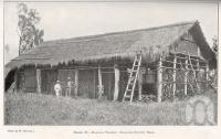 """<span class=""""caption-caption"""">Banana pocket, tobacco-drying shed, 20km south of Proserpine</span>. <br />From <span class=""""caption-book"""">Queensland Agricultural Journal</span>, 1921, collection of <span class=""""caption-contributor"""">Fryer Library, UQ</span>."""