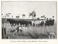 "<span class=""caption-caption"">Field work, after morning tea, Allora</span>. <br />From <span class=""caption-book"">Queensland Agricultural Journal</span>, 1922, collection of <span class=""caption-contributor"">Fryer Library, UQ</span>."