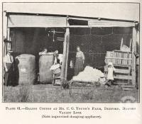 """<span class=""""caption-caption"""">Baling cotton at Mr C.G. Young's farm, Deeford, Dawson Valley Line</span>. <br />From <span class=""""caption-book"""">Queensland Agricultural Journal</span>, 1922, collection of <span class=""""caption-contributor"""">Fryer Library, UQ</span>."""
