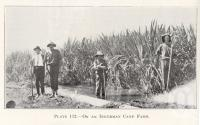 "<span class=""caption-caption"">On an Inkerman cane farm</span>. <br />From <span class=""caption-book"">Queensland Agricultural Journal</span>, 1923, collection of <span class=""caption-contributor"">Fryer Library, UQ</span>."