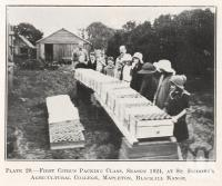 "<span class=""caption-caption"">Citrus packing class at St Isodore's Agricultural College, Mapleton, Blackall Range</span>. <br />From <span class=""caption-book"">Queensland Agricultural Journal</span>, 1924, collection of <span class=""caption-contributor"">Fryer Library, UQ</span>."