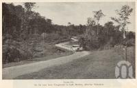 "<span class=""caption-caption"">On the road from Yungaburra to Lake Barrine, Atherton Tableland</span>. <br />From <span class=""caption-book"">Queensland Agricultural Journal</span>, 1935, collection of <span class=""caption-contributor"">Fryer Library, UQ</span>."