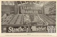 """<span class=""""caption-caption"""">Stanthorpe apple exhibit</span>. <br />From <span class=""""caption-book"""">Queensland Agricultural Journal</span>, 1938, collection of <span class=""""caption-contributor"""">Fryer Library, UQ</span>."""
