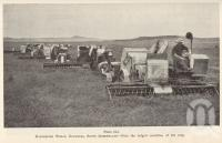 """<span class=""""caption-caption"""">Harvesting wheat, Evanslea</span>. <br />From <span class=""""caption-book"""">Queensland Agricultural Journal</span>, 1939, collection of <span class=""""caption-contributor"""">Fryer Library, UQ</span>."""