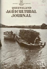 "<span class=""caption-caption"">Punting sugar cane on Maroochy River to the Moreton Mill at Nambour</span>. <br />From <span class=""caption-book"">Queensland Agricultural Journal</span>, 1941, collection of <span class=""caption-contributor"">Fryer Library, UQ</span>."